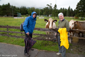 Phil, Mikey and their new cow friends on a misty day in Reutte