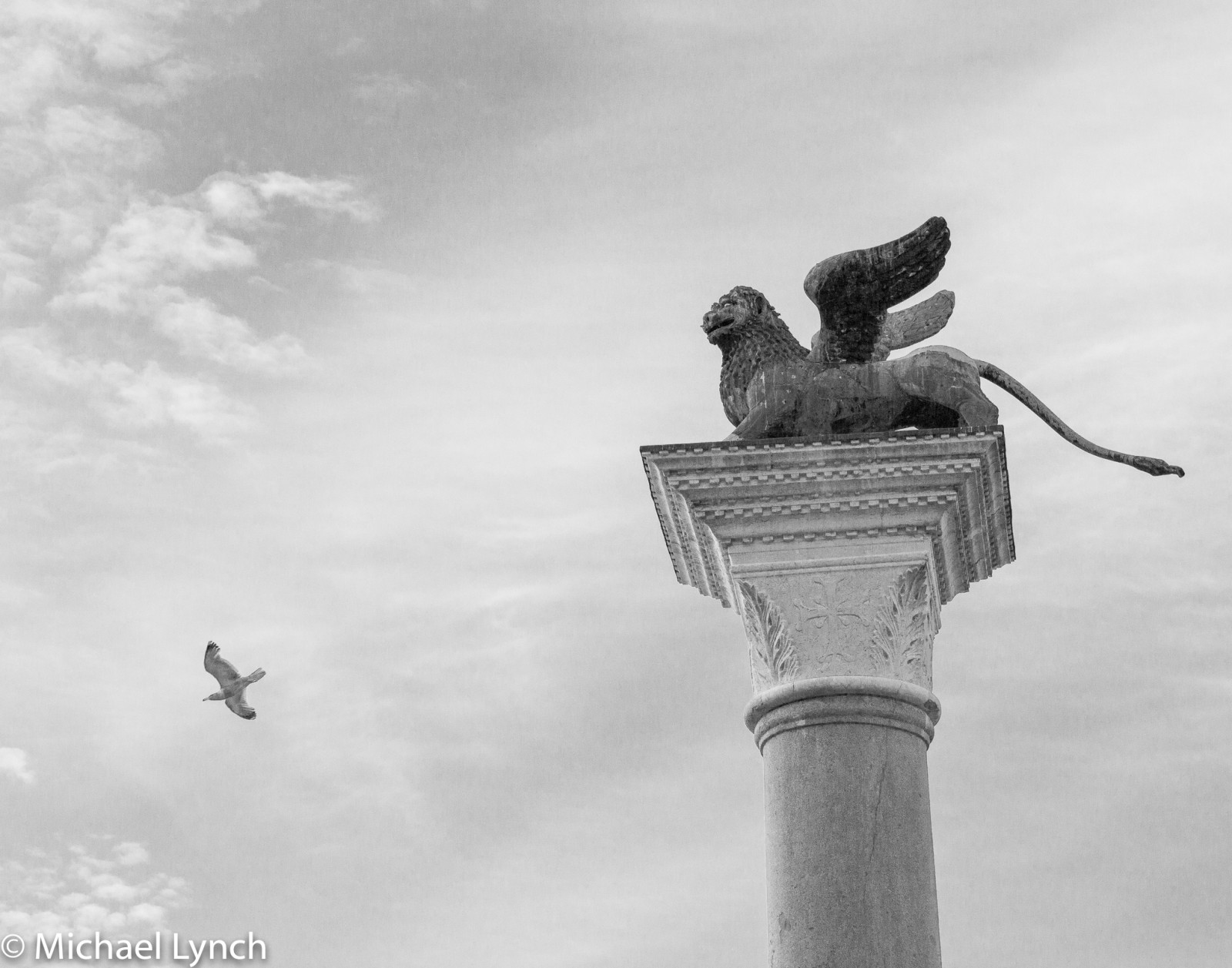 Flying Lion and seagull